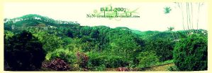 DaLat-no4 by nyndream