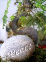 Peaceful Zen by Readmeabook21