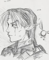 Link by razorbladekitty