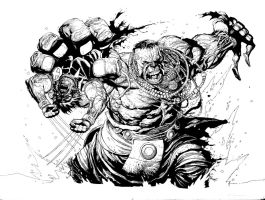 Hulk vs Wolverine Yu by waitedesigns