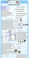 Paint Tool Sai Tips and Tricks by DreamingEssence