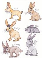 Watership Down Rabbits by chikajin