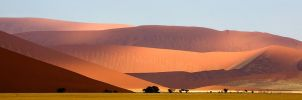 Dune world by Skeleton-coast-safas