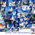 SONIC THE HEDGEHOG pics by PrincessEmerald7