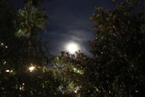 French Riviera by Moonlight 2 by Danelp