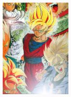 Dragonball Z by jovee