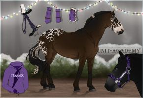 Traaker Import  |Christmas GIFT 111 by BRls-love-is-MY-Live