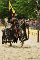 The Black Knight by TrollDuNord