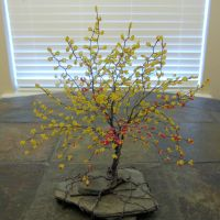 Cool tree sculpture I bought by AmandaPainter87