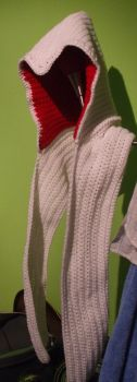 Assassin's Creed Hooded Scarf by GoldenEnigma