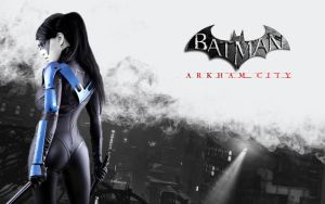 Nightwing: Arkham City by A-B-Original