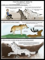 Wolves according to Wolfaboos. by pookyhorse