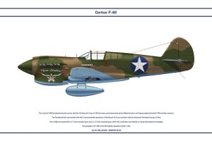 P-40E USA 9th FS 2 by WS-Clave