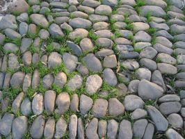pebbled by oddradish