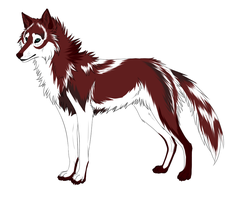Red wolf adopt - CLOSED by NiseSK