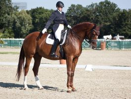 National Dressage and Jumping_161 by CalyHoney