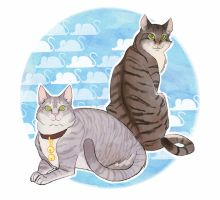 cats II by wiccimm