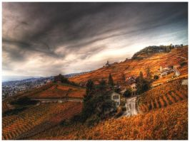 Swiss Vineyard Landscape 2 WP by superjuju29