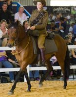 STOCK - 2014 Total Equine Expo-33 by fillyrox