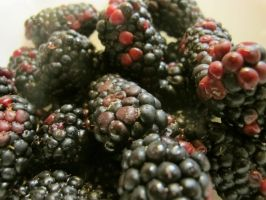 Big Black Berries 2 by Windthin