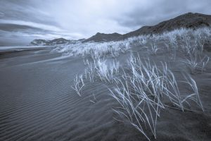10 Seconds Of Wind. by lomatic