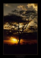 African Sky 2 by dethita