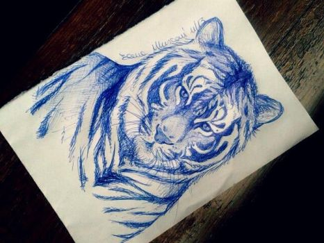 Tiger sketch by elenaeris