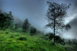 The foggy Hill by Heimstrekka