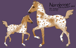 1633 Design: EquineLover12 by keeplaughing