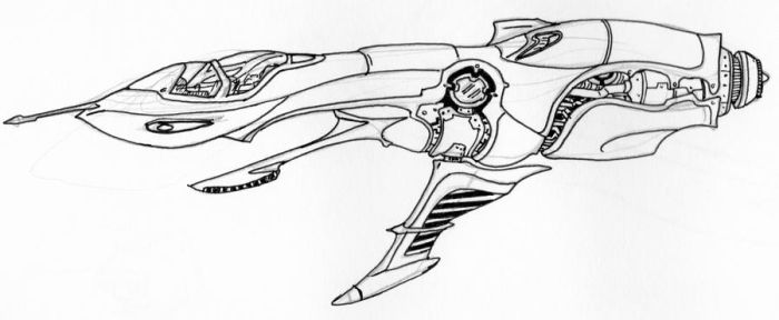 Hornet Interceptor by Angryspacecrab