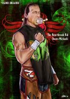 Shawn Michaels Unleashed by Bardsville