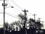 telephone wires by jakejames