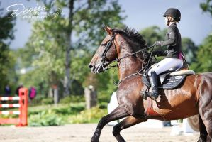 National Eventing Discovery by DenisaKc