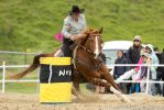 Barrel racing stock by Valkyrie-Stock