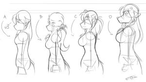 2kinds Breastsize Chart sktch by Twokinds