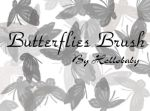 Butterflies Brush Set by Hellobaby