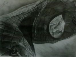 My Sketch Of Spider Man by DICapriofan