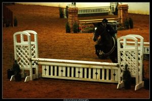 Winter I show 10 by blondy0262