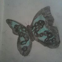Butterfly by izzy3301