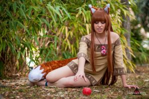 Horo from Spice and Wolf3 by ely707