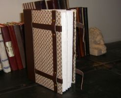'Steamer Trunk' Leather Book by msjbass