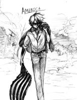 APH : America means Business by DarkHalo4321