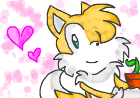 Tails Muro by ClassicAmy
