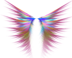 The Angel Wings by Coolok