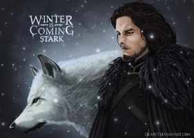 The winter is coming, Stark by Dilartt