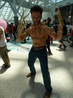 AX2014 - D4: 358 by ARp-Photography