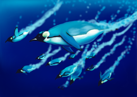 Penguin Dive by Solinarii