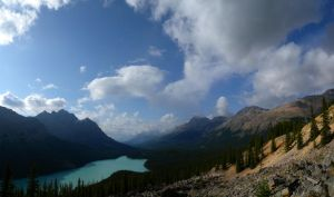 Peyto Lake by martigras