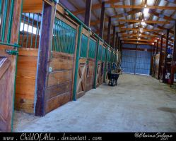 Stable Stock - 7 by ElaineSeleneStock