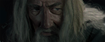 Gandalf The Grey by ZhouRules